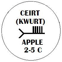 2-5_Apple